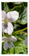 Close-up Of White Violets  Beach Towel