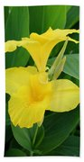 Closeup Of A Tropical Yellow Canna Lily Beach Towel