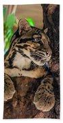 Clouded Leopard 2 Beach Towel