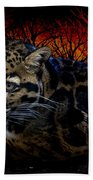 Clouded Leopard Two Beach Towel