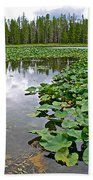Clouds Among The Lily Pads In Swan Lake In Grand Teton National Park-wyoming  Beach Towel
