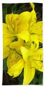 Cluster Of Yellow Lilly Flowers In The Garden Beach Towel