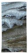 Cluthu Tree Beach Towel