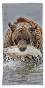 Coastal Brown Bear With Salmon IIi Beach Towel