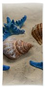 Coastal Dreams Beach Towel