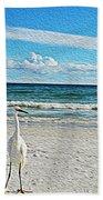 Coastal Life Beach Sheet