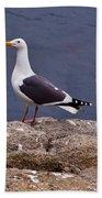 Coastal Seagulls Beach Towel