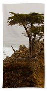 Coastline Cypress Beach Towel