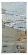 Coconut On The Sand Beach Towel