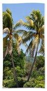 Coconut Palm Trees In Key West Beach Towel