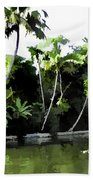 Coconut Trees And Others Plants In A Creek Beach Towel