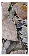 Cold Leaves Beach Towel