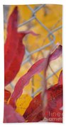 Color Containment  Beach Towel