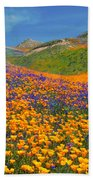 Color Filled Hills Beach Towel
