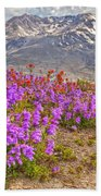 Color From Chaos - Mount St. Helens Beach Towel