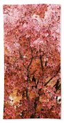Color In The Tree 03 Beach Towel