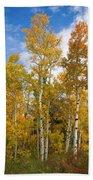 Colorado Autumn Aspens  Beach Towel
