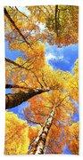Colorado Autumn Sky Beach Towel