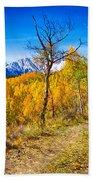 Colorado Backcountry Autumn View Beach Towel