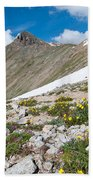 Colorado Elkhead Pass Beach Towel