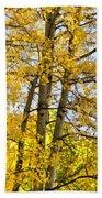Colorado Fall Aspens 2 Beach Towel