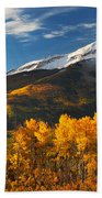 Colorado Gold Beach Towel by Darren  White