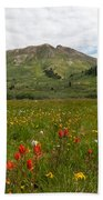 Colorado Meadow And Mountain Landscape Beach Towel