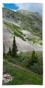 Colorado Mountain Landscape Beach Towel