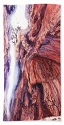 Colorado Mountains Garden Of The Gods Canyon Beach Towel