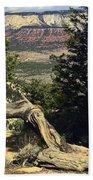 Colorado Plateau Beach Towel