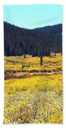 Colorado River Valley In Fall Beach Towel