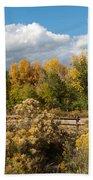 Colorado Urban Autumn Landscape Beach Towel