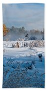Colorado Waning Autumn And Approaching Winter Beach Towel by Cascade Colors