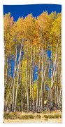 Colorful Aspen Panorama Beach Towel