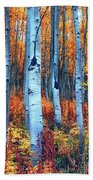 Colorful Aspens Beach Sheet