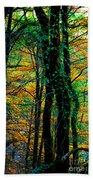 Colorful Autumn Beach Towel