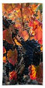 Colorful Autumn Grapes Beach Towel