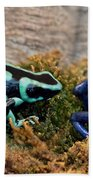 Colorful But Deadly Poison Dart Frogs Beach Towel