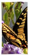 Colorful Butterfly Square Beach Towel