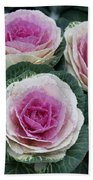 Colorful Cabbage  Beach Towel