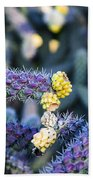 Colorful Cactus Red Purple Green Yellow Plant Fine Art Photography Print  Beach Towel