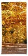 Colorful Canopy Beach Towel by Sandy Keeton