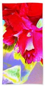 Colorful Carnation Beach Towel