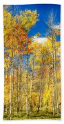 Colorful Colorado Autumn Aspen Trees Beach Towel