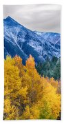 Colorful Crested Butte Colorado Beach Towel