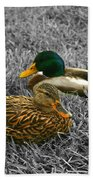 Colorful Ducks Beach Towel