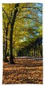 Colorful Fall Autumn Park Beach Towel