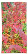 Colorful Fall Leaves Autumn Crepe Myrtle Beach Towel
