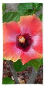 Colorful Flower Beach Towel