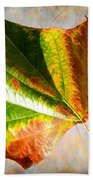 Colorful Leaf On The Ground Beach Towel